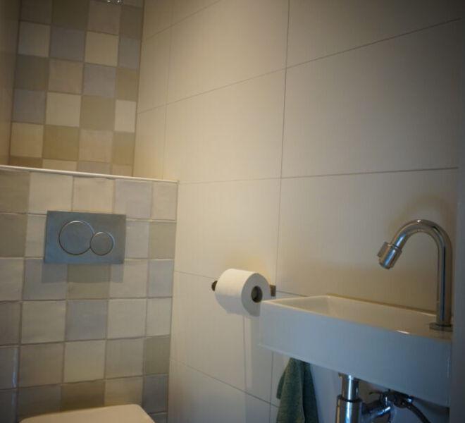 Toilet-trap-683x1024